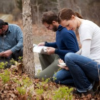 Wild Food Ramble: Foraging Class