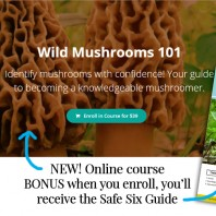 Wild Mushrooms 101 Online Course