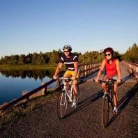 Bicycle Maintenance & Repair